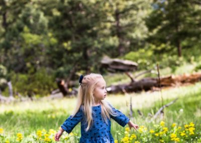 Littleton family child photographer Mt. Falcon park Colorado mountain wildflowers photography little girl twirling photo session