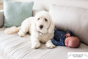 Littleton family photographer newborn new baby boy in home lifestyle photography session photo dog doggie sleeping Solterra Lakewood parents parenthood Colorado